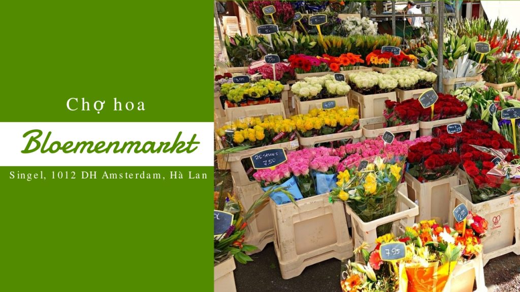 chợ hoa Amsterdam
