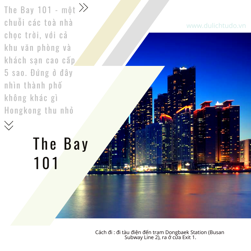 the bay 101