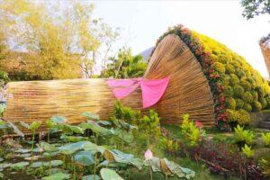 Đường kính của bó hoa cúc mâm xôi là 12,1m